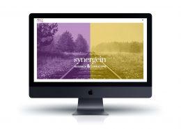 Web Synergein